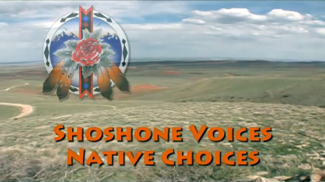Shoshone Voices, Native Choices